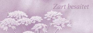 Der Banner: violetter Hintergrund, Blumen und der Schriftzug Zart besaitet